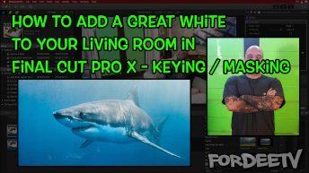add great white